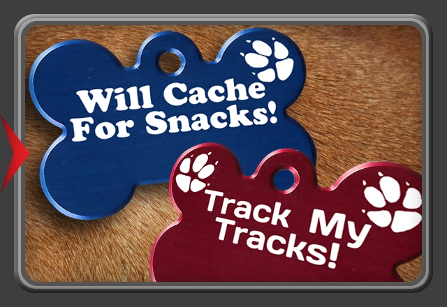 Bone Tag - Large - Trackables for our four legged friends!