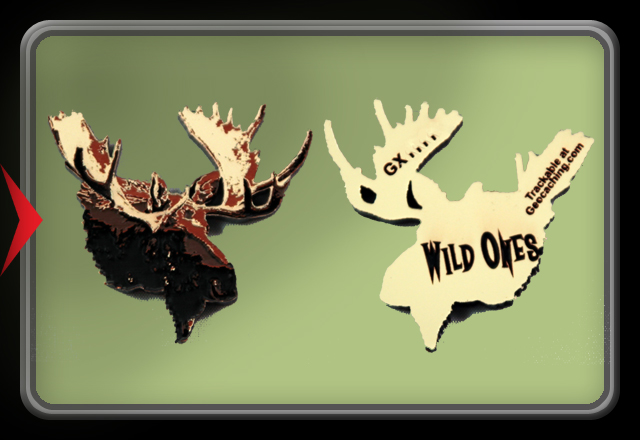 Wild Ones - Moose Trackable